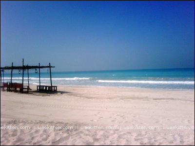 saadiyat beach day